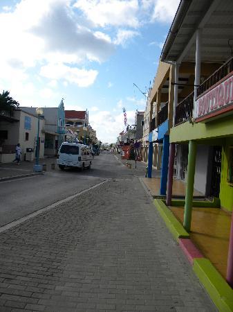 Bonaire Oceanfront Apartments: via hacia el hotel