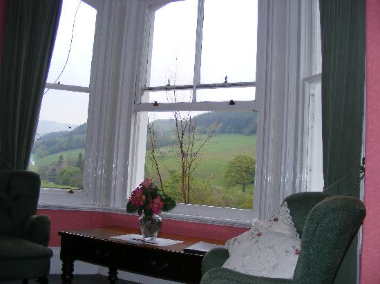 Buckley Arms Hotel: View from the bed - Snowdon Room