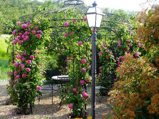 Casa Portagioia: The flowers were in full bloom