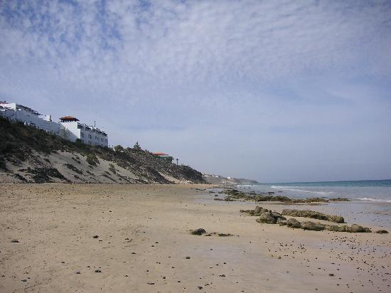TUI MAGIC LIFE Fuerteventura : Beach Below Hotel