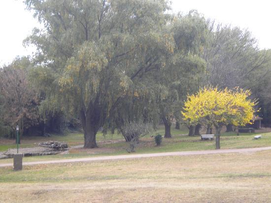 Hostal Cruz Chica: parque del hostal