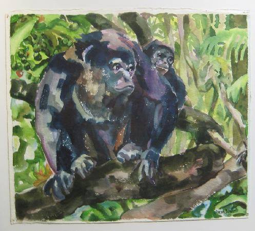 Sarah's Gallery: Sarah's watercolor of Hollar Monkeys
