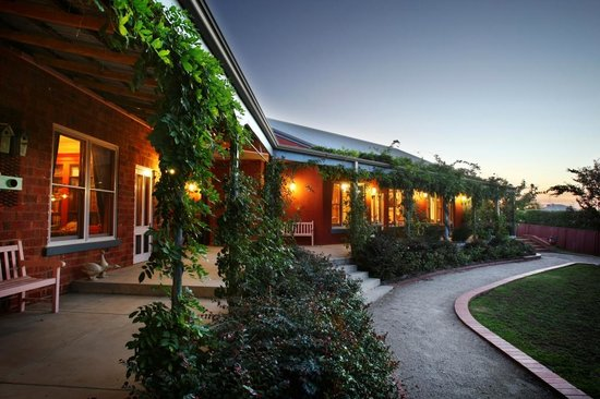 Albertines Beechworth: Wisteria covered verandah