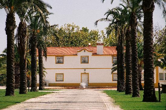 "Abrantes, Portugalia: ""Mother House"""