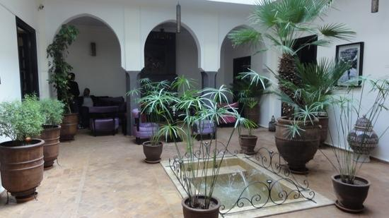 Ryad Amiran: le patio