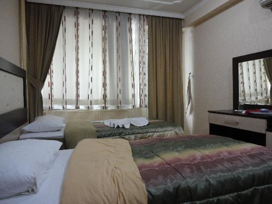 Osmangazi, Turquía: Single room