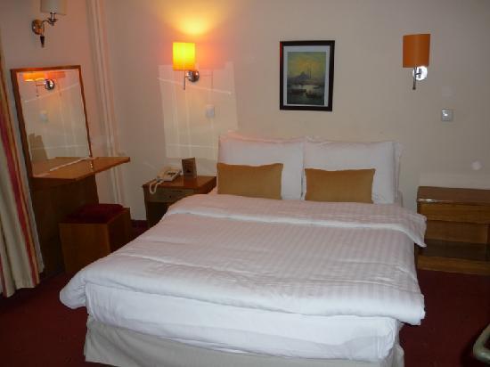 Hotel Ilkay: Ilkay Hotel - Room