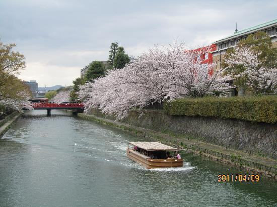 Aranvert Hotel Kyoto: 京都は桜の季節がおススメです。