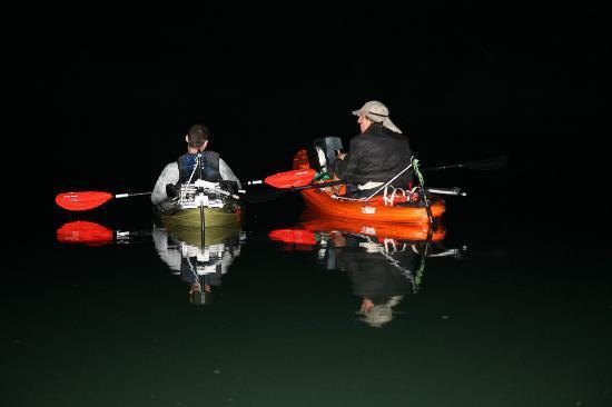 Motorized Kayak Adventures: Moonlight cruize- pic 2