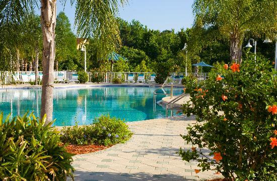 Blue Heron Beach Resort: Tropical pools and outdoor jacuzzi overlooking the lake