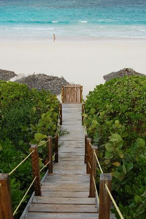 Coral Sands Hotel: Leading to the beach