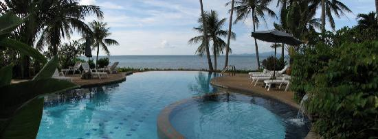Coconut Paradise Resort: Pool view from the Coconut Paradise P2