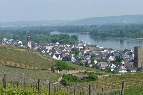 Historisches Weinhotel Zum Grünen Kranz: Blick auf  Rüdesheim