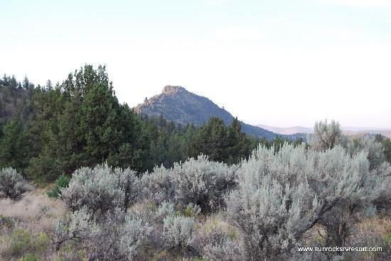 Sun Rocks RV Resort: scenery mountains surrounding the campground at Sun Rocks RV park