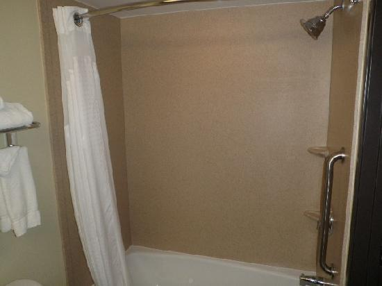 Holiday Inn Austin North-Round Rock: Shower