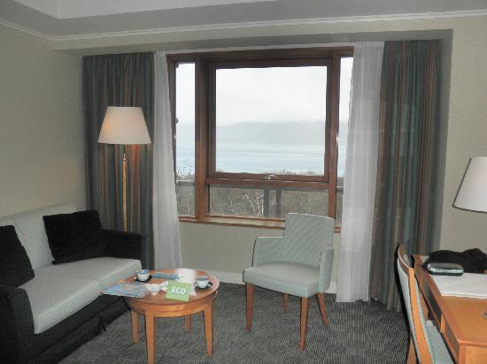 Towada Hotel : ホテルの窓から(外は雨・・)