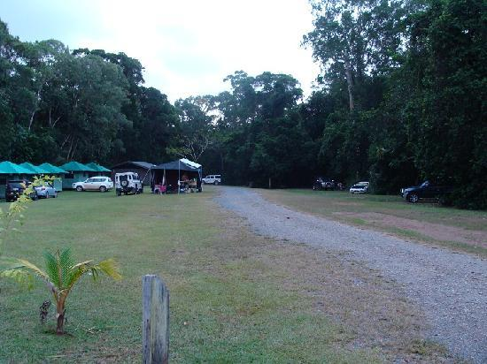 ‪‪Cape Trib Camping‬: camgrounds in Cape Trib‬