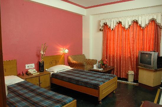 Hotel Kohinoor: deluxe room view