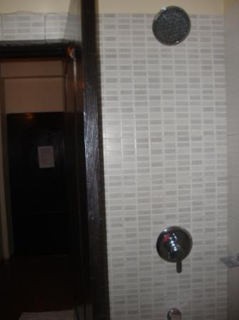 Royal Park Beach Resort: Hidden Shower behind the door of the cramped Toilet!!