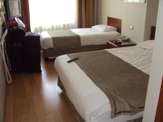 Ant Hotel