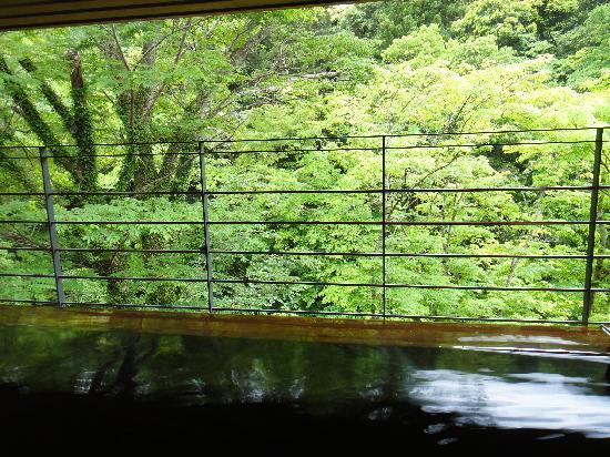 Asebino: 3階の露天風呂からの眺め