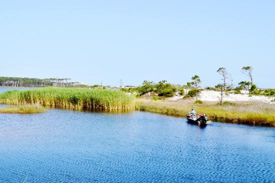 Grayton Beach, FL: Western Lake