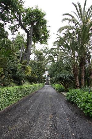 Monte Palace Tropical Garden 1