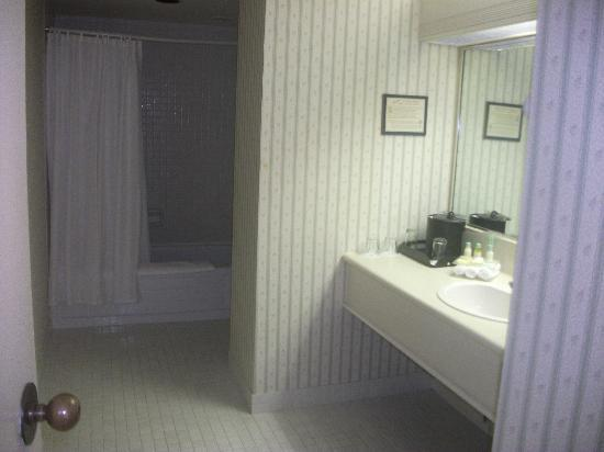The National Hotel and Suites Ottawa: bathroom