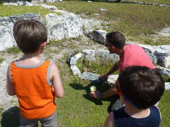 Ruines El Rey (Zona Arqueologica El Rey) : Feeding the iguanas.