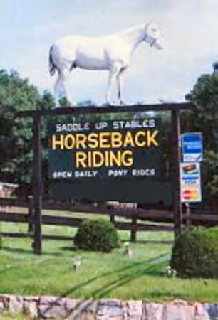 Horseback riding in Lake George