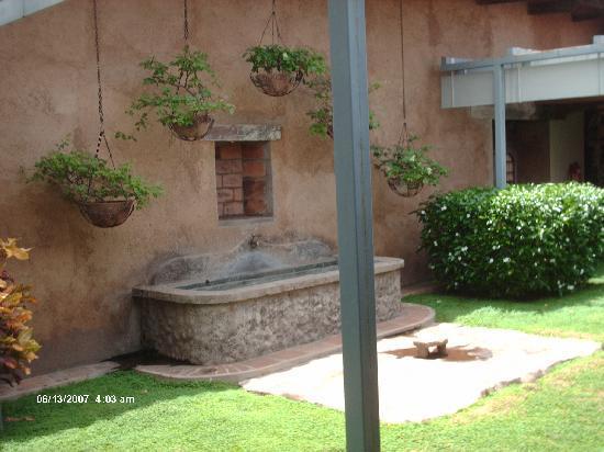 Museo de Arte Fundación Ortiz Gurdián: Museo garden 3