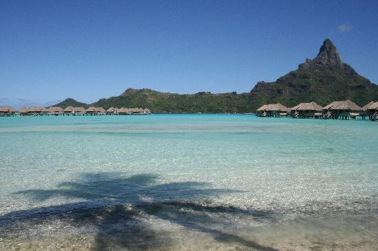 InterContinental Thalasso-Spa Bora Bora: View of OW bungalows
