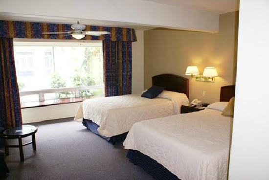Hotel San Carlos: Rooms