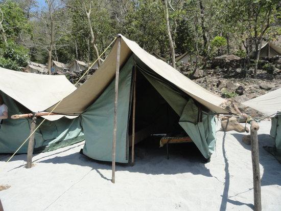Ganga Nature Camp