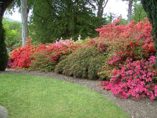 Mount Garmon View Guesthouse: Bodnant Gardens