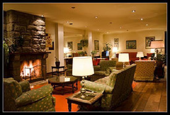 Hotel caupolican desde san mart n de los andes for Hoteles con chimenea
