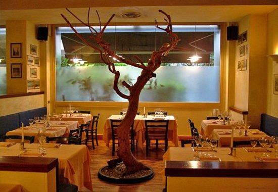 Ristorante ibiza milano stazione centrale ristorante for Ristorante l isolotto milano
