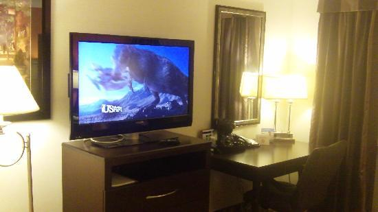 Holiday Inn Express Maspeth, Queen New York: Room C12 Television