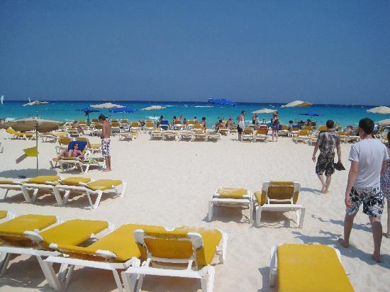 Iberostar Tucan Hotel : Beach
