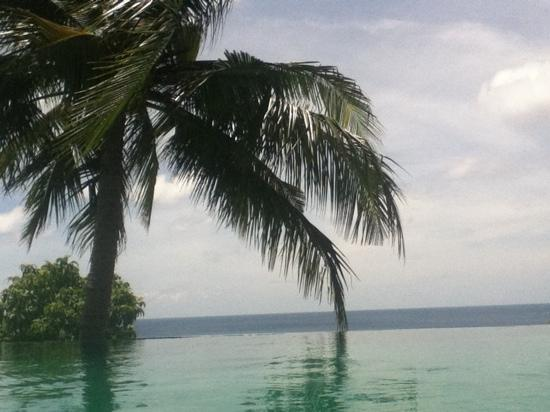 Tanote Villa Hill : pool view