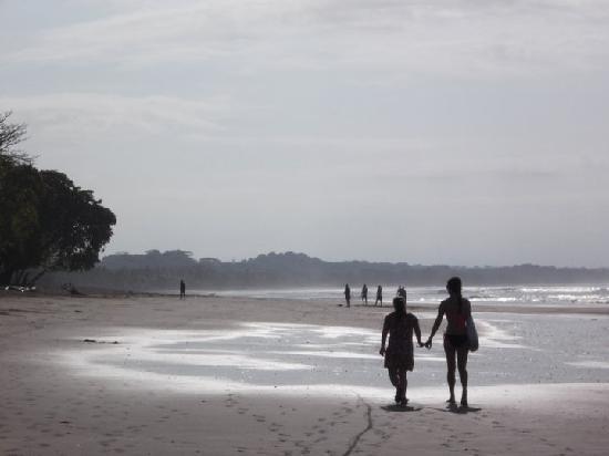 Apartamentos Iguanas: Esterillos Oeste beach