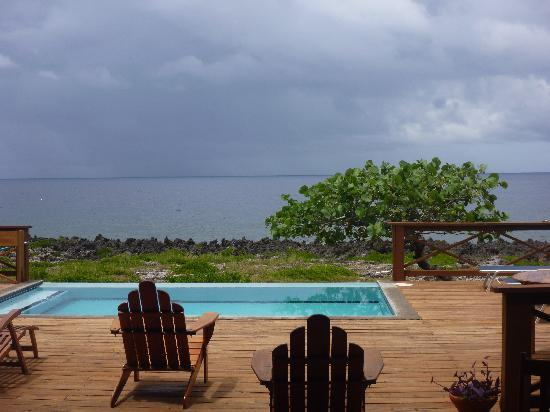 Cocolobo: pool view