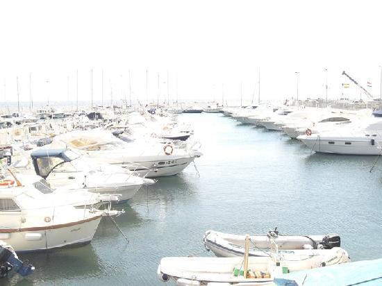 Vela Bianca: vista mare dall'Hotel Principe Decurtis Diano Marina
