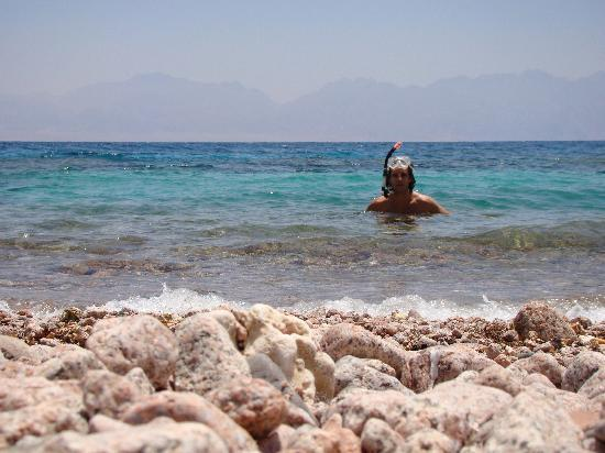 Sayadeen Village Nuweiba: Snorkelling at the base of the mountain.  Stunning coral, 5 mins drive from hotel
