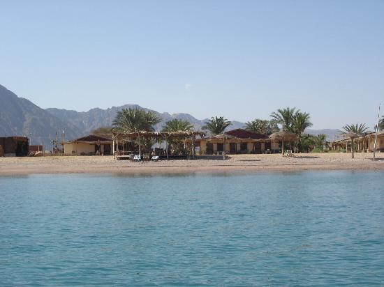 Sayadeen Village Nuweiba : Home sweet home.  Taken from the pedallo.