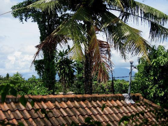 Villa Kerti Yasa: from balcony