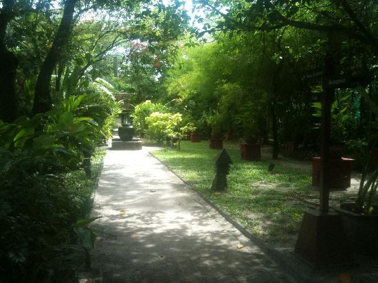 Le Paradis Boutique Resort & Spa : pathway leading to the lobby area