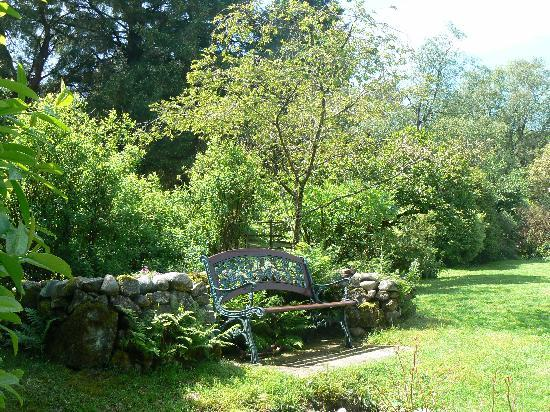 Forest How Guest House: Relax in the garden at Forest How