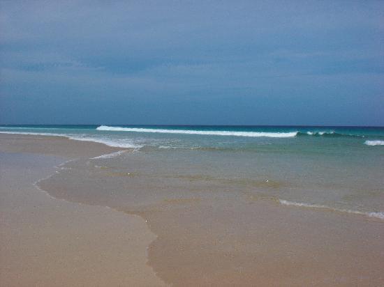 Occidental Jandia Mar : La plage