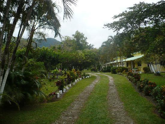 Cabanas Potosi: Garden